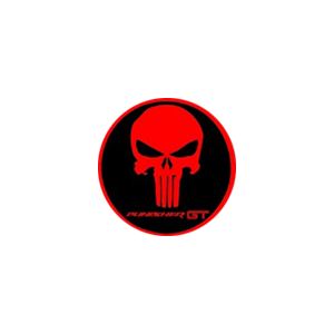 RS-2GS-PUNISHER